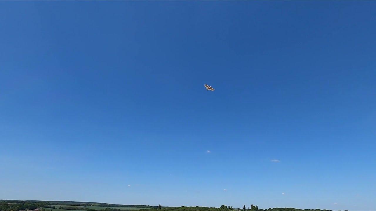 FPV Chasing RC Planes GoPro Hero 8 Black фотки
