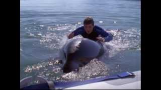Free Willy 3 - (1997) trailer