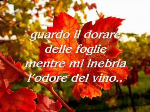 Carezza d 39 autunno poesia di giulia gabbia youtube - La finestra di fronte soundtrack ...