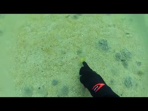 Mevagh scuba diving