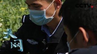 《天网》暗夜里的枪口: 65岁的老人突然失踪 第二天被人发现 在离家两公里的油菜地死亡   CCTV社会与法