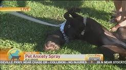 Dog Anxiety Spray