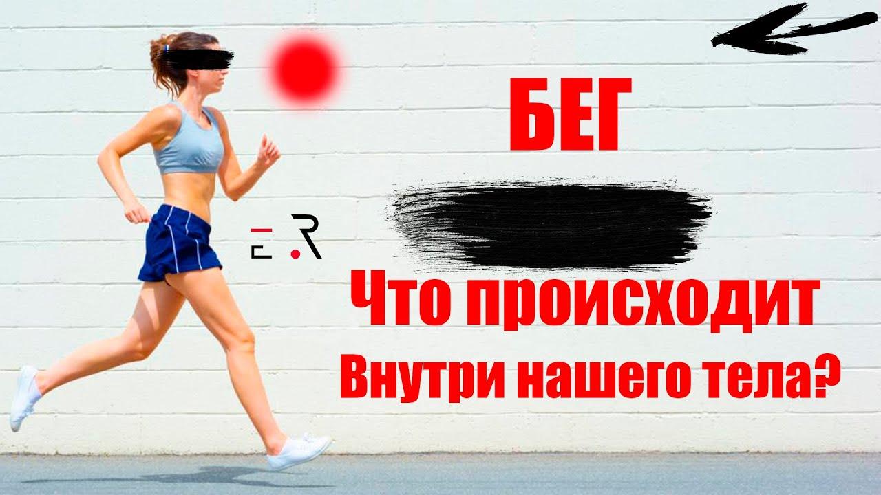 факты про бег. марафон. что происходит внутри тела ?