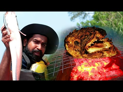 3 KG വാഹ മീൻ പിടിച്ച് ഗ്രീൽ ചെയ്തത് | SNAKEHEAD CATCH AND COOK KERALA | BACKWATER FISHING KERALA