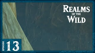 The Cliffhanger | Realms of the Wild – Episode 13