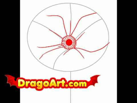 How to draw poppy step by step youtube for Poppy drawing step by step