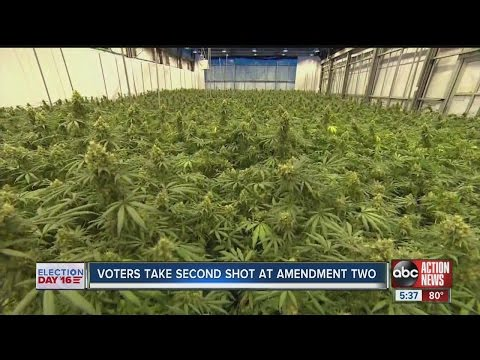 Election 2016:   legalizing medical marijuana