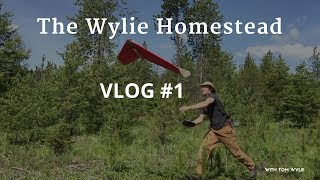New Idaho Property Layout! [Wylie Homestead VLOG #1]