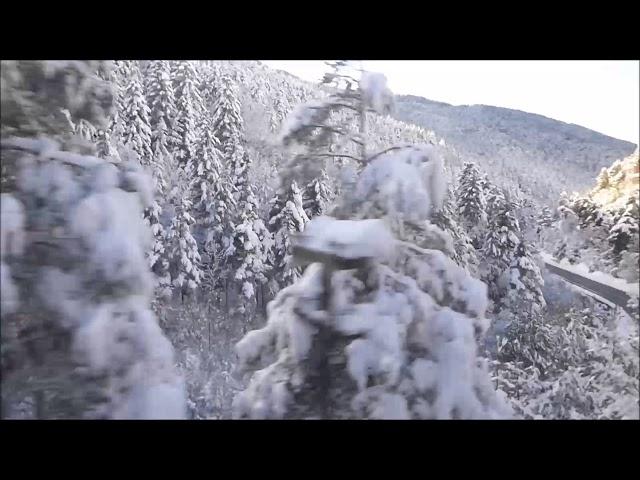Espectacular gruix de neu prop de la Molina - Gener 2018