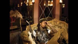 Lil Wayne feat. T-pain - Damn Damn (new song/ full version from Tha Carter Documentary)+ LYrics