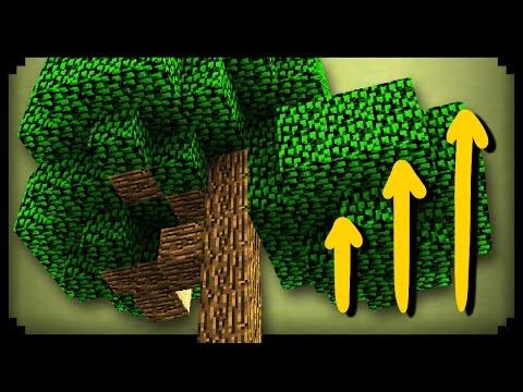 ✔ Minecraft: How to Grow Big Trees