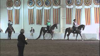 Kennedy and Creo St Louis National Charity Horse Show 2015