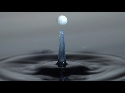 What Is Surface Tension?   Richard Hammond's Invisible Worlds   Earth Lab