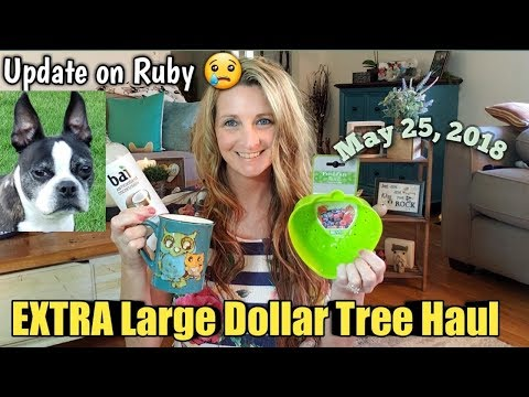 EXTRA Large Dollar Tree Haul*NEW*Finds May 25,2018/Update on Ruby😔