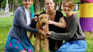 Первый приют для животных в городе Магнитогорск