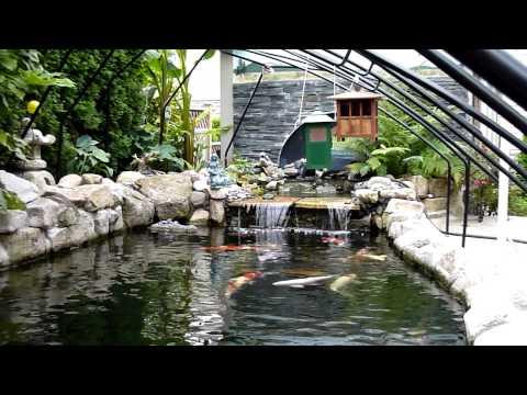 Pond Tour.MTS