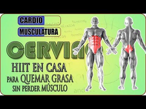 Entrenamiento CARDIO HIIT en casa - Rutina de ejercicios para CORE | abs workout | WOD CERVINO