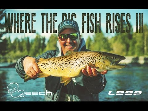 Where The Big Fish Rises III - Sweden