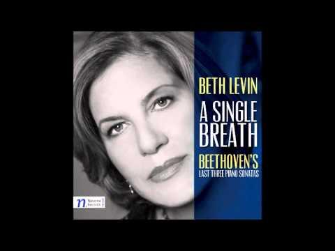 A Single Breath - Beth Levin