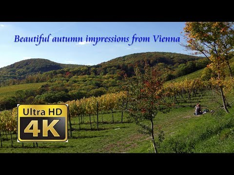 Beautiful autumn impressions from Vienna - 4K 50p - 2017