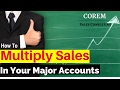 Major Account Management In B2B Sales : How To Achieve Sales Quotas | MAM Plan