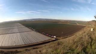 Betteravia Farms - Santa Maria Valley, CA