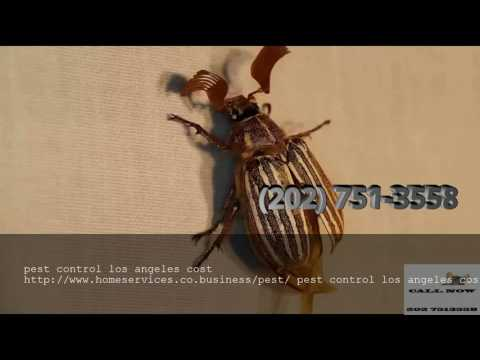 pest control los angeles cost