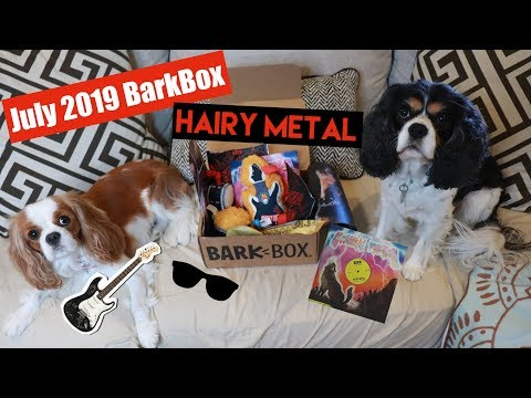 BarkBox Unboxing July 2019 | Plus Sammie & Kaia's SnapChat Memories | Cavalier King Charles Spaniel