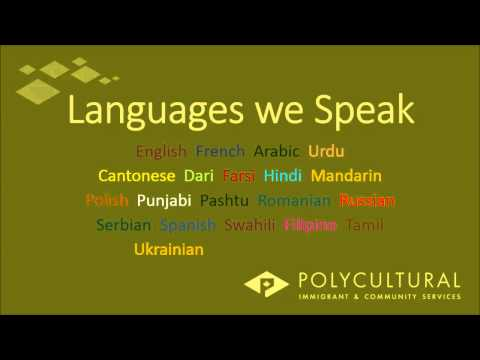 Welcome to Polycultural Immigrant & Community Services