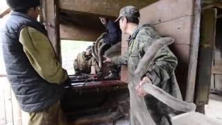 Срезка пантов на Алтае(, 2016-06-08T09:33:38.000Z)