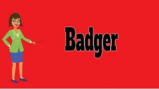 Badger | Pronunciation | Meanings | Examples | Definition | Animals Name