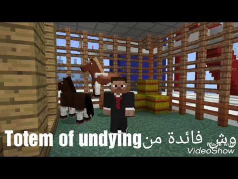 وش فائدة من Totem of Undying في...