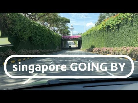 CLEAN SINGAPORE STREETS and FLOWERS on the freeway! :: singapore GOING BY #5