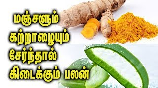 Mix Aloe Vera and turmeric and see the magic -  Tamil Health Tips