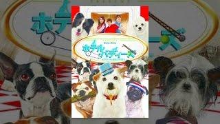 ちびっ子ギャング「戦争の犬」
