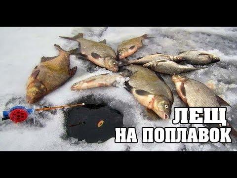 Поклёвки Леща на ПОПЛАВОК. Прикормка Бомба. Зимняя Рыбалка в Палатке. Лещ на Подледной Ловле