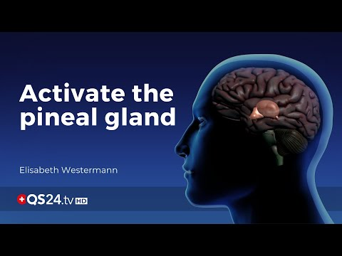 Activation of the pineal gland | Elisabeth Westermann | Meaning of Life | 🇨🇭 QS24