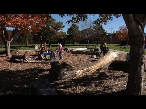 Brooklyn Park Playground Inspires Kids To Experience Nature