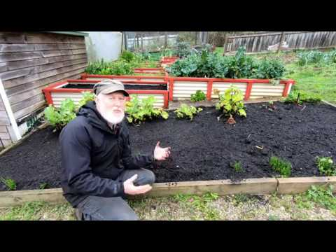 """""""Proper"""" Compost Too Difficult? Make LAZY COMPOST!"""