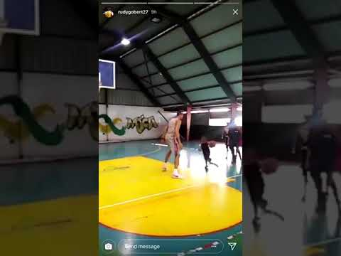 Rudy Gobert savagely erases a little kid's shot from existence
