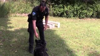 Chapel Hill Police Department K-9 Unit