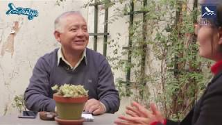 IDECA TV (Diálogos 82): Enfoque de género