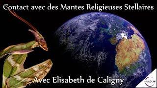 « Contact avec des Mantes Religieuses Stellaires » avec Elisabeth de Caligny - NURÉA TV