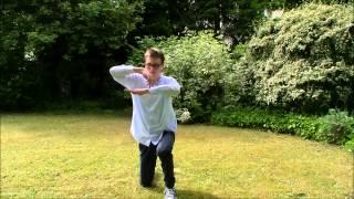 Dubstep Dance 2014 | Cracks (Flux Pavilion Remix) | Xam