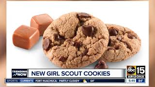 Girl Scouts debut new cookie for 2019