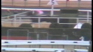 中山大障害・秋 1984年 メジロアンタレス
