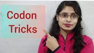 CODON - tricks ( Very simple way) ,  start codon,  stop codon.. / genetic code / codon in hindi