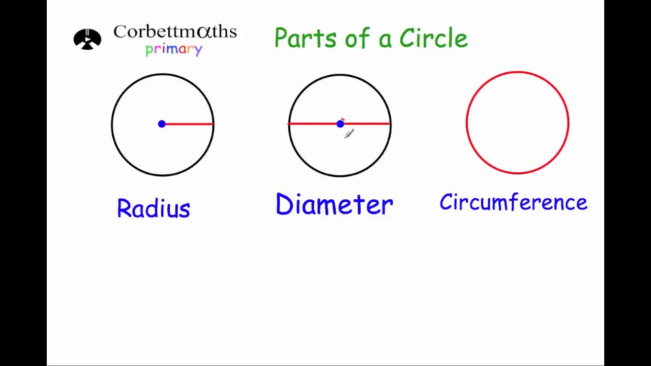 Parts of a Circle - Primary - YouTube