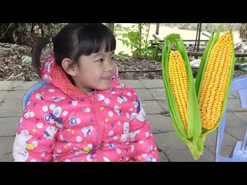 Ký Sự Về Quê Ăn Tết – Về Với Ông Bà Ngoại ❤ AnAn ToysReview TV ❤