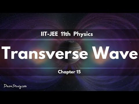 Transverse Wave for IIT-JEE Physics | CBSE Class 11 XI | Video Lecture in Hindi